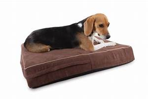 orthopedic 4 pound memory foam dog beds washable suede With best dog bed for the money