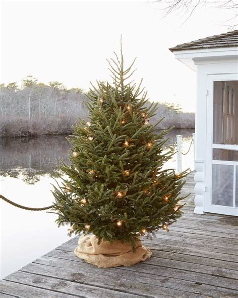 ideas   cover  christmas tree base