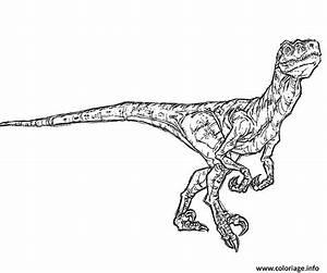 Coloriage Gratuit Jurassic World.Coloriage De Indoraptor