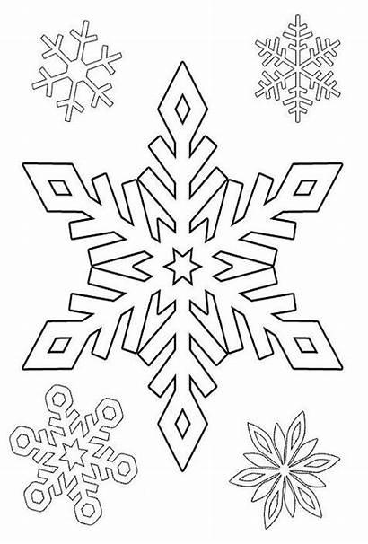 Winter Coloring Nature Season Printable Drawing Kb