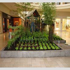 Indoor Garden Nursing Homes And School Should Be Doing