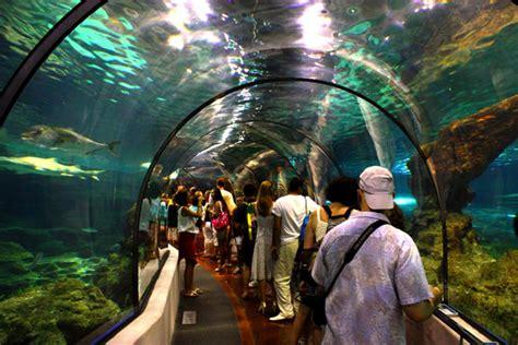 aquarium de barcelone tarif els catalans abocats a fer turisme dom 232 stic a causa de la crisi r 224 dio barcelona cadena ser