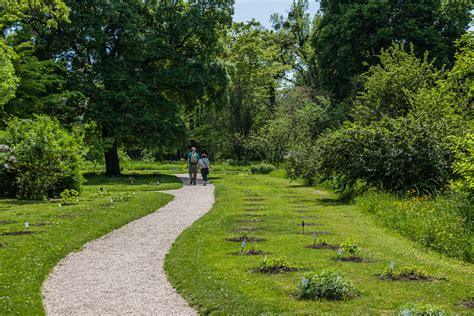 Direktor Botanischer Garten Wien by Er 246 Ffnung Des Endlicher Fenzl Kerner Weges Im Botanischen