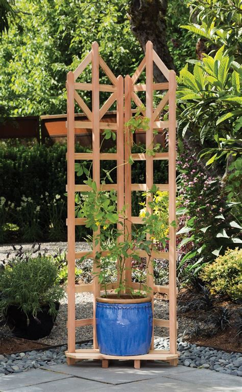1000 ideas about garden trellis on trellis