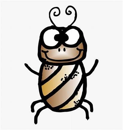 Cvc Clip Bug Clipart Clipartkey