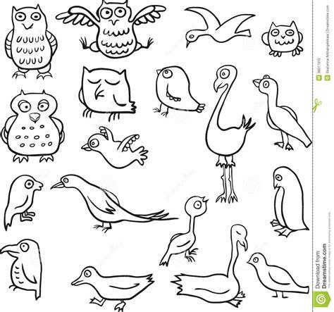 cartoon  drawing birds stock photo image