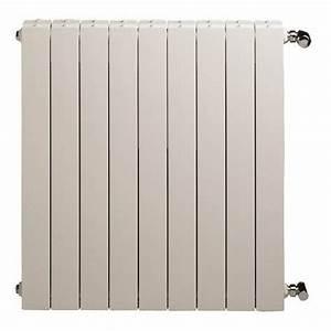 Radiateur Pour Chauffage Central : radiateur eau chaude 4 elements ~ Premium-room.com Idées de Décoration