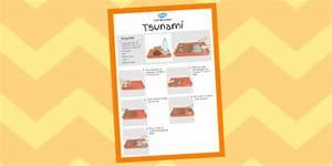 Tsunami Experiment Instructions Sheet