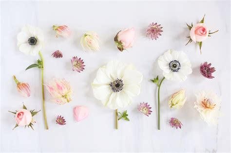 floral desktop wallpapers top  floral desktop