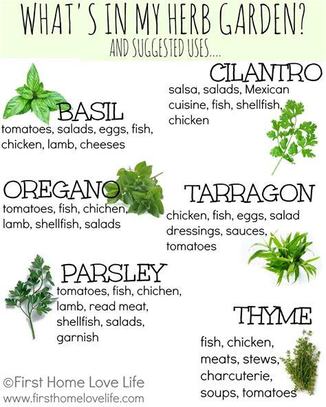 Sage Green Kitchen Ideas - creating a kitchen herb garden first home love life