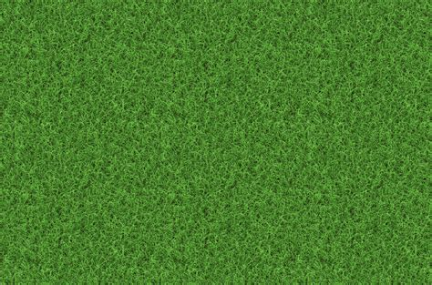 Grass Background ·① Download Free Backgrounds For Desktop