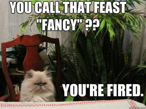 Fancy Feast Meme - fancy feast meme 28 images fancy feast well the can said fancy feast icanhascheezeurgercom