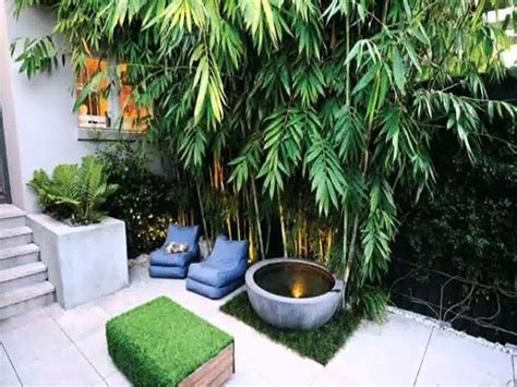 style home plans with courtyard small space courtyard garden design ideas