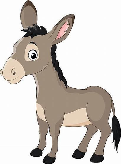 Donkey Cartoon Burro Ane Happy Asino Esel