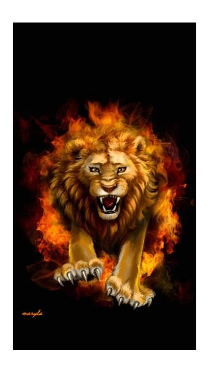 Fire Lion Lions Gifs Animated Giphy Leone