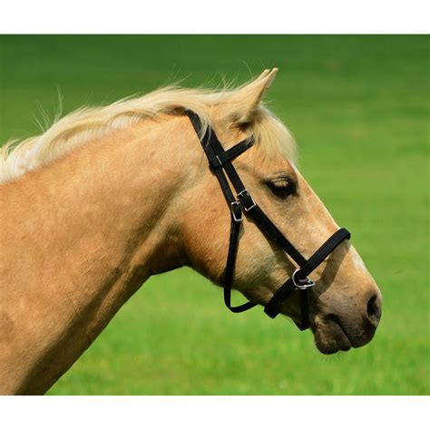 bridle bitless leather horse bridles alternative tack views twohorsetack