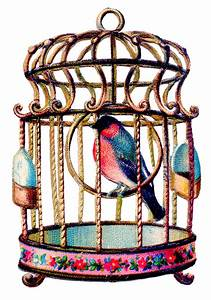 Vintage Clip Art - Delightful Colorful Bird in Cage - The ...