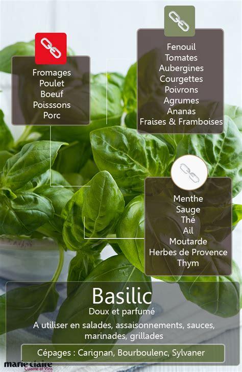 cuisiner le basilic comment utiliser le basilic en cuisine cuisine et vins