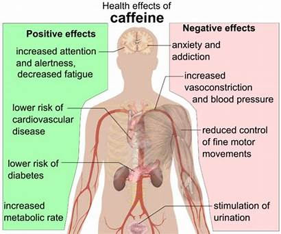 Caffeine Effects Health Positive Negative Kearney Christine