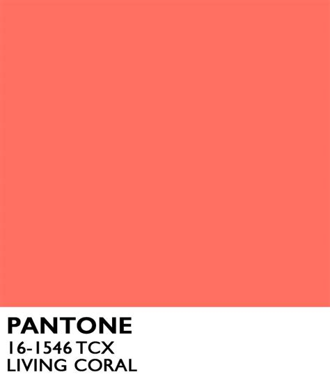 coral color living coral what you need to now about the 2019