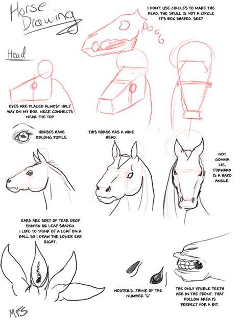horse drawing tutorial