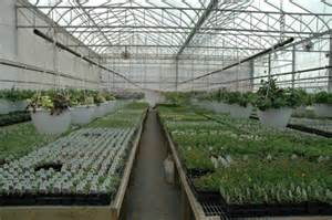 Commercial Greenhouse Plans Designs