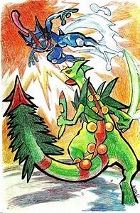 Pokemon Mega Sceptile Card Images | Pokemon Images