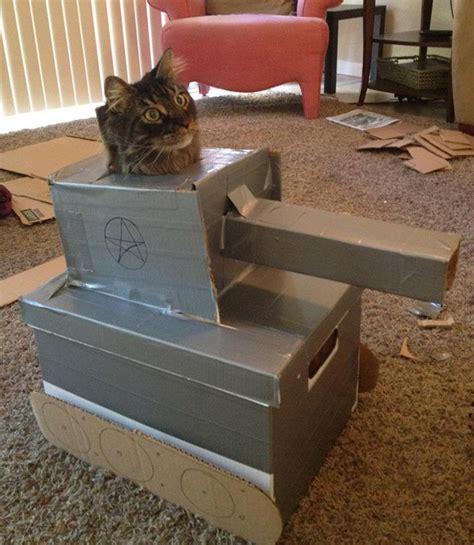 hilarious cats  cardboard tanks barnorama