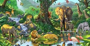 Murals | african jungle murals | Wallpaper Murals | Art ...