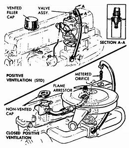 Pcv Valve 1976 Chevy C10 Pickup 250 Inline  Chevy  Diagram