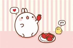 Molang – the Cute Bunny from Korea – Kao