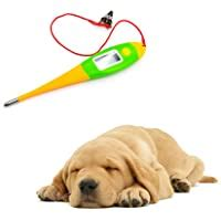 Amazon Best Sellers: Best Dog Thermometers