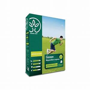 Engrais Gazon Naturel : gazon r paration express 1kg avec engrais gamm vert ~ Premium-room.com Idées de Décoration