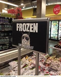 Grumpy Cat – Frozen Like my Heart - Meme Collection