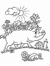 Pig Coloring Potbellied Animals sketch template