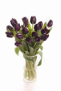 How To Keep Tulips From Drooping HGTV