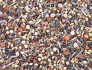 Graines Oiseaux Du Ciel : graines de sante 1 kg grany oiseaux les semailles ~ Melissatoandfro.com Idées de Décoration