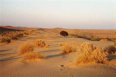thar desert travel india tourism and india tour packages thar desert