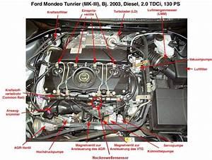 Ford Escape Body Control Module Location  Ford  Free