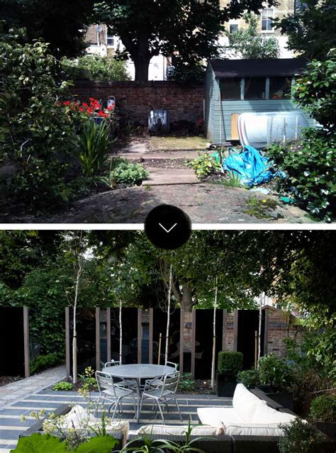 modern japanese garden  north london