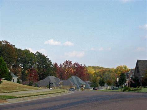 lakeland tn autumn  lakeland neighborhood photo