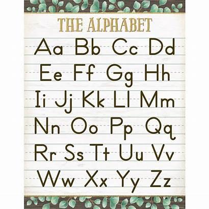 Alphabet Chart Eucalyptus Created Resources Teacher Calendar