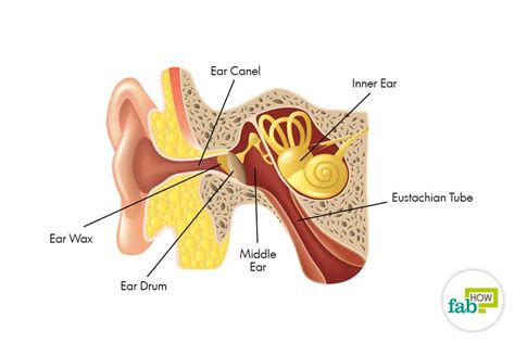 what can i use to unclog my kitchen sink how to unclog ears in less than 5 seconds fab how