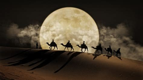 desert moon camel art desktop wallpaper hd  mobile phones  laptops wallpaperscom