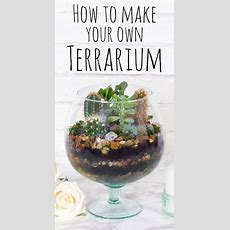 How To Make A Diy Terrarium — Doodle And Stitch