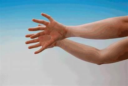 Gestures Criatividade Intellectual Hands Melhorar Formas Inusitadas
