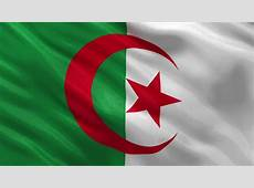 Algeria Flag Stock Footage Video Shutterstock
