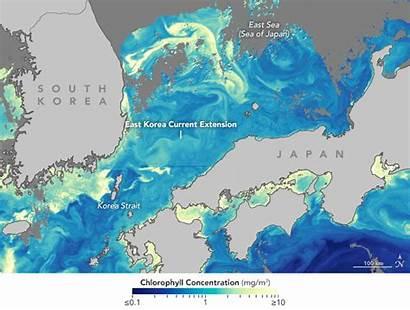 Korea Current East Coms Satellite Ocean Nasa