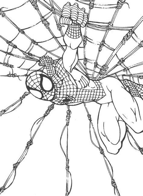dibujos  colorear de spiderman