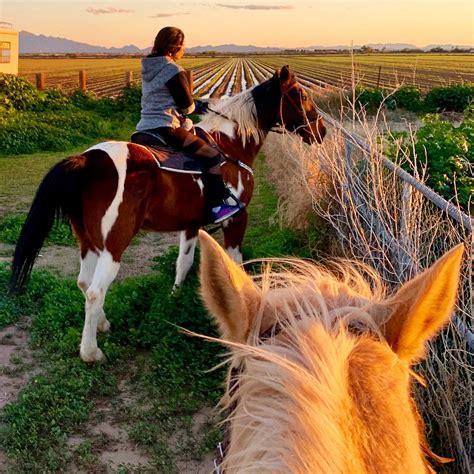 riding trail horseback arizona flagstaff horse